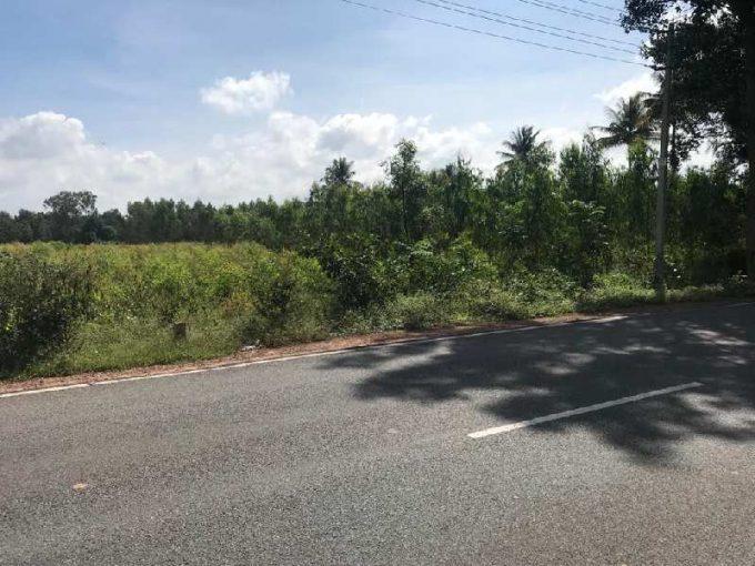 50 Acre Farm Land for Sale in Hoskote Malur Road, Bangalore