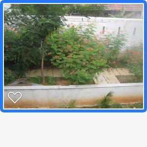 WhatsApp Image 2021-07-26 at 9.38.36 PM (16)